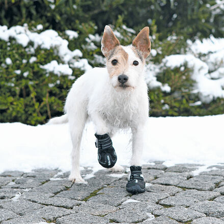 Trixie Ochranné boty WALKER ACTIVE  S-M 2 ks (jack russell teriér)