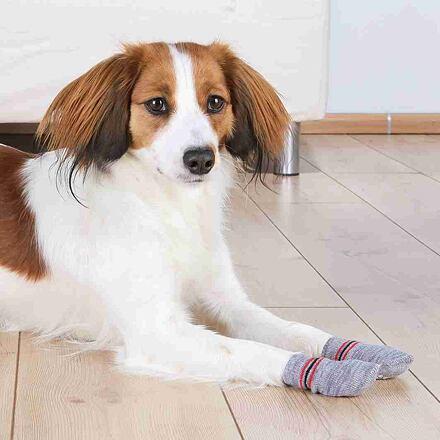 TRIXIE Protiskluzové šedé ponožky, 2 ks pro psy XXS-XS (jorkšír)