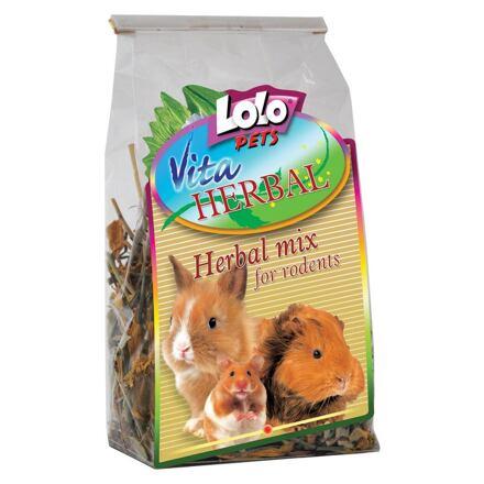 LOLO LOLOPets VITA HERBAL bylinkový mix pro hlodavce 40 g
